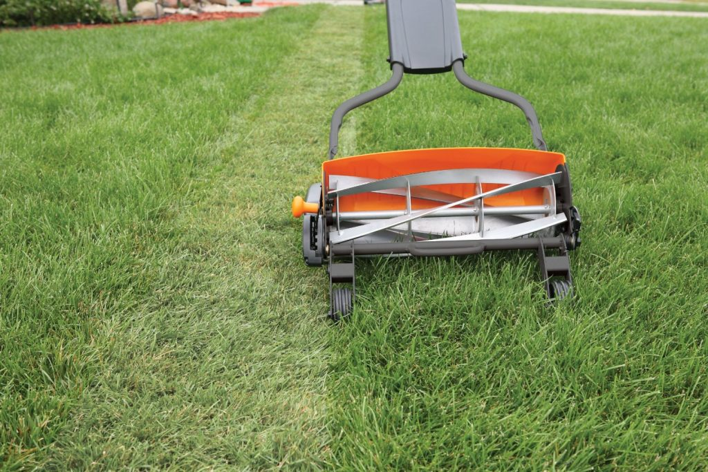 Fiskars Reel Mower 6201 Review