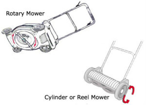 Rotary vs Reel Mower