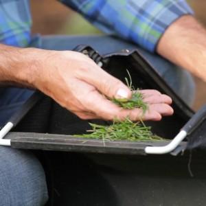 GreenWorks 25302 cut grass Details