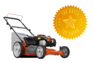 best gas push mowers